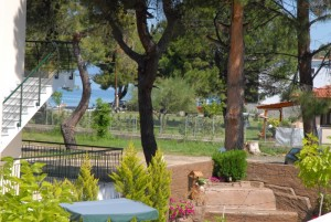 Michel Mar Studios Apartments Paradisos Neos Marmaras Halkidiki Garden view to sea